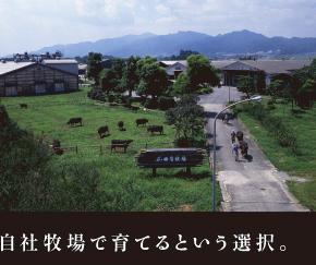 自社牧場で育てるという選択。